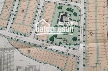 Mở bán đất dự án Caric đường 12 Trần Não, Q. 2, giá 40 - 65 tr/m2, SHR, LH 0932619291 vân