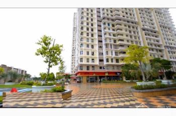 Chuyên cho thuê căn hộ chung cư Era Town Đức Khải với giá tốt nhất, LH Huy 0916887727