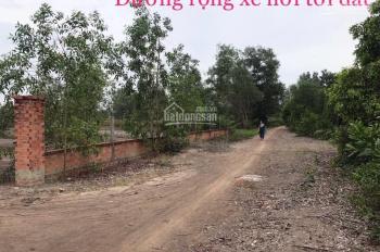 Đất full thổ vườn (CHN). Tổng DT 9.000m2, hẻm 10mét đường Cây Gõ, An Phú, Củ Chi