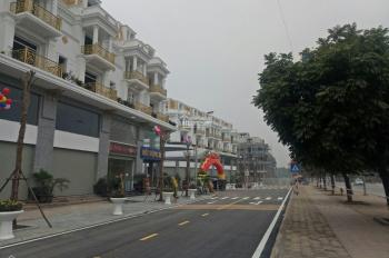 Bán những lô shophouse khủng mặt đường Lê Trọng Tấn