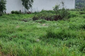 Bán đất đường Khánh Bình 73 gần ngã tư Khánh Bình. DT 14.5m x 50m =716m2 thích hợp làm kho xưởng