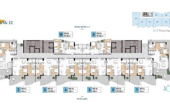 Chính thức mở bán căn hộ nghỉ dưỡng 5* Aria Vũng Tàu, 1PN 2.5 tỷ - 2PN 3.2 tỷ (VAT). LH: 0911118687