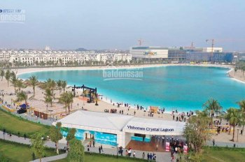 Bán căn liền kề NT06 - dự án Vinhomes Ocean Park