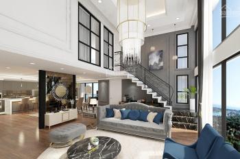 Bán căn duplex 192m2, 2 tầng chung cư New Skyline Văn Quán, 20 triệu/m2, LH 0918.446.389