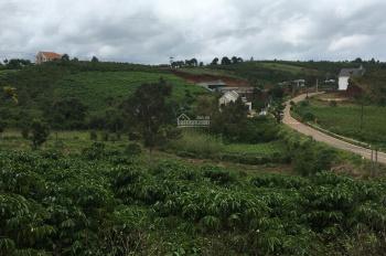 Chủ bán đất 38 x 142m Bảo Lộc ngay ngã 4 Phùng Hưng, Phan Đình Phùng đi thác ĐamBri (xem video)