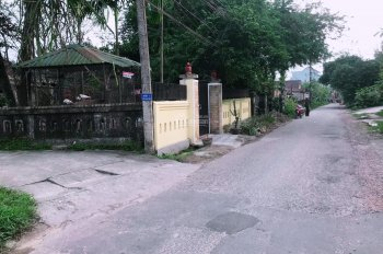 Bán đất 2 mặt tiền đường Trần Thái Tông - Phường Trường An