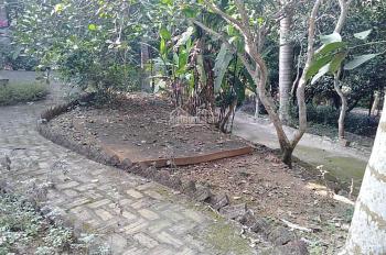 Bán đất xã Cư Yên, Lương Sơn, Hòa Bình, diện tích rộng 3800m2