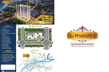 The Pegasuite II căn hộ cao cấp bậc nhất quận 8 từ CĐT uy tín chỉ 30tr/m2 từ 1-3 PN 0966799951