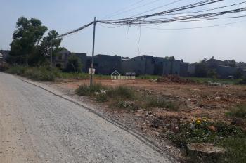 Bán đất 4870m2 ngang 52m dài 100m phường Thái Hòa, Tân Uyên, Bình Dương
