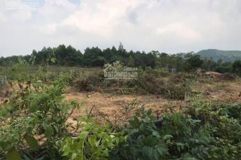Đất TC sổ đỏ 2324m2 xã Ngọc Thanh - Phúc Yên Vĩnh Phúc giá chỉ 599k/m2 làm trang trại, nghỉ dưỡng