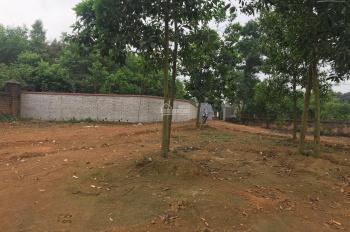Đất Vân Hòa, mặt đường nhựa, view đồng lúa, 1,2 triệu/m2, chủ đất ĐT 0982853734