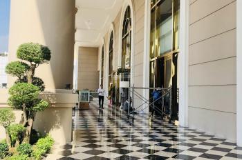 Bán gấp căn hộ Terra Royal đã bàn giao được xem nhà lầu cao 2PN 2WC góc mặt tiền Nam Kỳ, quận 3