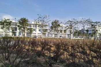 Tư vấn, mua bán liền kề IA20, Sunshine City, biệt thự khu K Ciputra