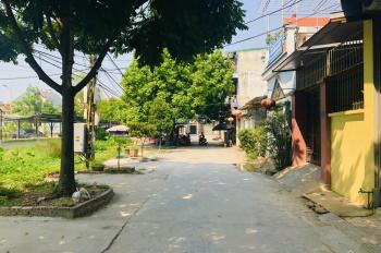 Bán 68m2 đất đấu giá tại Đông Dư, Gia Lâm, Hà Nội đường ô tô tải vào nhà giá rẻ