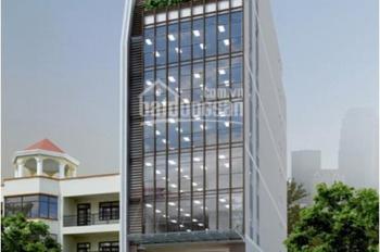 Bán cao ốc 10 tầng Lê Thị Hồng Gấm, đối diện Bitexco, DT: 4x20m, giá 45 tỷ