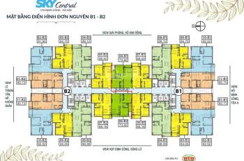 Chủ nhà bán gấp CH 176 Định Công tầng 1509 (66m2) và 16 - 06 (87m2), siêu rẻ 28tr/m2, 0933269345