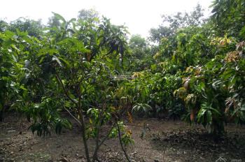 Bán lô đất gần rất đẹp tại xã La Ngà, huyện Định Quán, tỉnh Đồng Nai