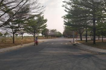 Khu dân cư Nam Tân Uyên, nơi an cư, lập nghiệp tốt nhất cho mọi gia đình