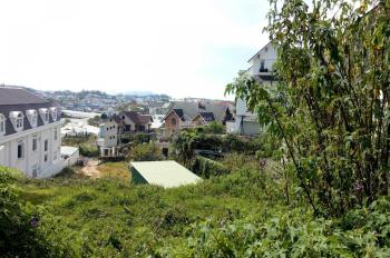 Đất thoáng, thế đất bằng phẳng khu vực xanh mát do có nhiều cây xanh mặt tiền đường chính Lý Nam Đế