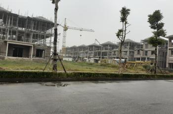Chính chủ bán đất biệt thự Vườn Cam - Hoài Đức. 280m2 giá 20tr/m2