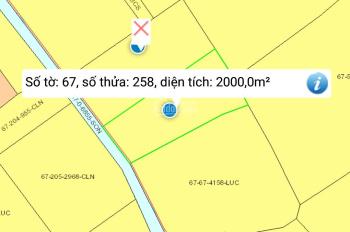 Bán 2000m2 đất vườn CLN xã Phước Khánh đất đi ghe 700 triệu/1000m2