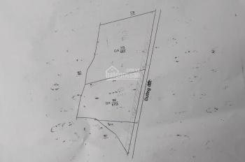 Bán đất Tân Định, Bắc Tân Uyên, nhựa 6m, điện 3 pha, quy hoạch đất SKC, 1.3 ha, 12 tỷ. 0971110488