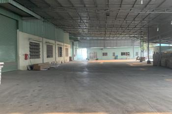 Cần cho thuê dài hạn 13000m2 kho, nhà xưởng mặt tiền Nguyễn Hữu Trí, huyện Bến Lức, tỉnh Long An