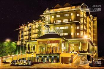 Bán khách sạn 2* đường Hoàng Việt (Đệ Nhất), Q.Tân Bình, DT 14mx20m, 8 lầu, TN 350tr/th, chỉ 62 tỷ