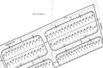 Bán đất mới trúng đấu giá Đông La - Hoài Đức khu X2, X3