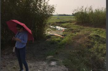 Đất xã Phước Hiệp Củ Chi 5193 m2 bán rẻ giá 10 tỉ