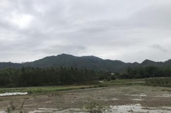 2324m2 giá chỉ 1.2 tỷ thổ cư sổ đỏ làm trang trại, nghỉ dưỡng, nhà xưởng xã Ngọc Thanh, Phúc Yên