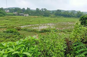 Bán 2173m2 giá 500 triệu tại Cư Yên Lương Sơn Hòa Bình