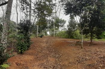 Bán 1560m2 có 200 đất ở lâu dài. Giá 850 triệu tại Cư Yên Lương Sơn Hòa Bình