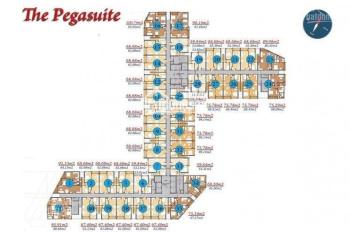 Bán căn hộ The Pegasuite P. 6 quận 8 MT Tạ Quang Bửu 60m2 full nội thất view Bitexco giá 2.4 tỷ