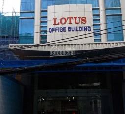chính chủ cho thuê văn phòng số 16 cửu long - p2 - Tân Bình, văn phòng 82m2 tại lầu 1