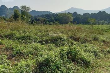 Cần chuyển nhượng lô đất 16000m2 đất làm khu nghỉ dưỡng cuối tuần, homestay tại Liên Sơn, LS, HB