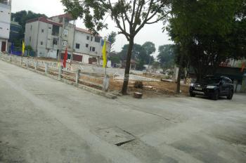 Tôi cần bán 48m2 đất ở chợ xã Nam Hồng, huyện Đông Anh