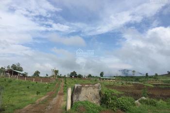 Bán đất chính chủ 4ha, cách Quốc Lộ 19C 400m, Đức Bình Tây, Sông Hinh, Phú Yên