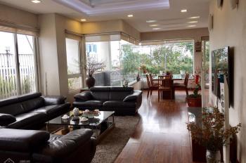 Cần cho thuê gấp penthouse tại chung cư mini, vị trí trung tâm quận Hai Bà Trưng, DT 400m2, 4 PN