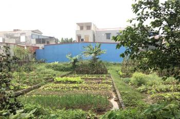 Bán đất đường rộng, ô tô đỗ cửa tổ 6 - thị trấn An Dương