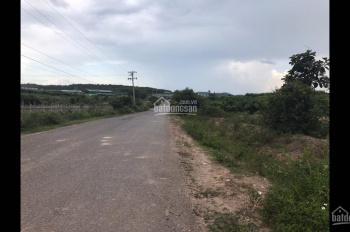 Cần bán đất tại thôn Phú An, xã Phú Hội, Huyện Đức Trọng, Lâm Đồng
