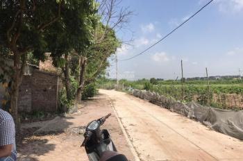 Cần bán 500m2 đất tại Đông Dư, mặt tiền 32m, đường 3m, chia lô 8 lô quá đẹp. LH: 03.3861.1368