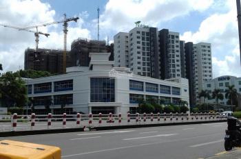 Bán gấp đất MT đường Nguyễn Hữu Cảnh, DT 100m2, giá chỉ 900 triệu, sổ riêng, thổ cư, LH: 0936173550