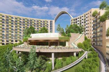 Siêu phẩm đất nền khu quy hoạch Hồ Tràm - Dambri - Bảo Lộc - Giá đầu cơ - sổ sẵn liên hệ ngay