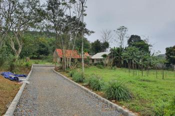 Cần bán 4000m2 phù hợp làm trang trại nghỉ dưỡng, homestay, reslof tại Yên Bài, Ba Vì, Hà Nội