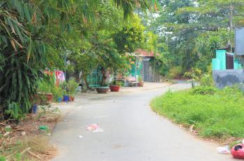 Bán đất vườn Củ Chi TP. HCM, giá rẻ 1.3tr/m2