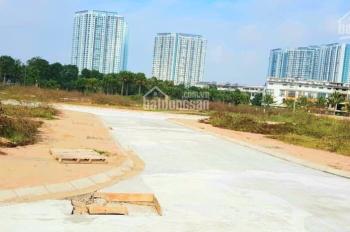 Bán đất dịch vụ Cửu Cao - Văn Giang