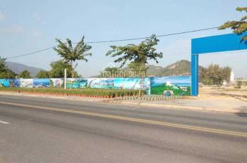 Cơ hội vàng đầu tư năm mới tại trung tâm Bà Rịa - Vũng Tàu - Khu đô thị mới Kim Dinh, giá tốt