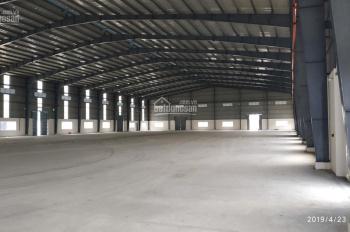 Cho thuê kho, nhà xưởng sản xuất, giá tốt trong KCN Phú An Thạnh, huyện Bến Lức, tỉnh Long An