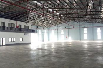 Cho thuê kho, nhà xưởng và văn phòng thuộc KCN Thuận Đạo, Thị trấn Bến Lức, tỉnh Long An